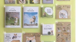 キャンドゥ新商品☆「柴犬まる」とのコラボレーション商品