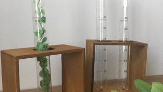 キャンドゥ新商品☆オシャレ!モノトーンなインテリア試験管グラス
