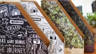 キャンドゥ新商品 おしゃれなデザインファイルボックス〜モノトーン&グリーン〜